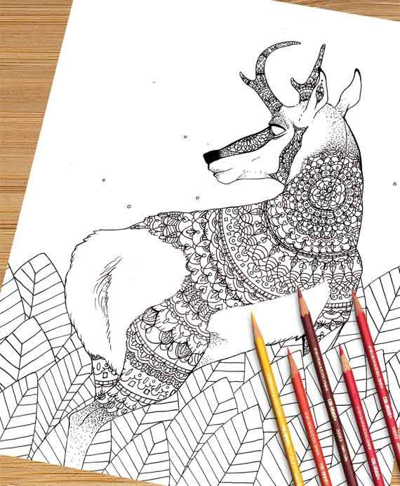 Pronghorn Coloring Page Mandala Coloring Pages Printable Adult