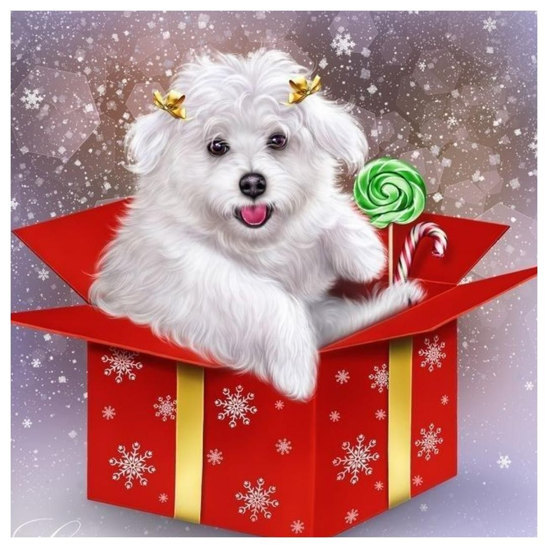 Pin by Jennifer Holmes on MALTESE Clipart in 2020 Puppy