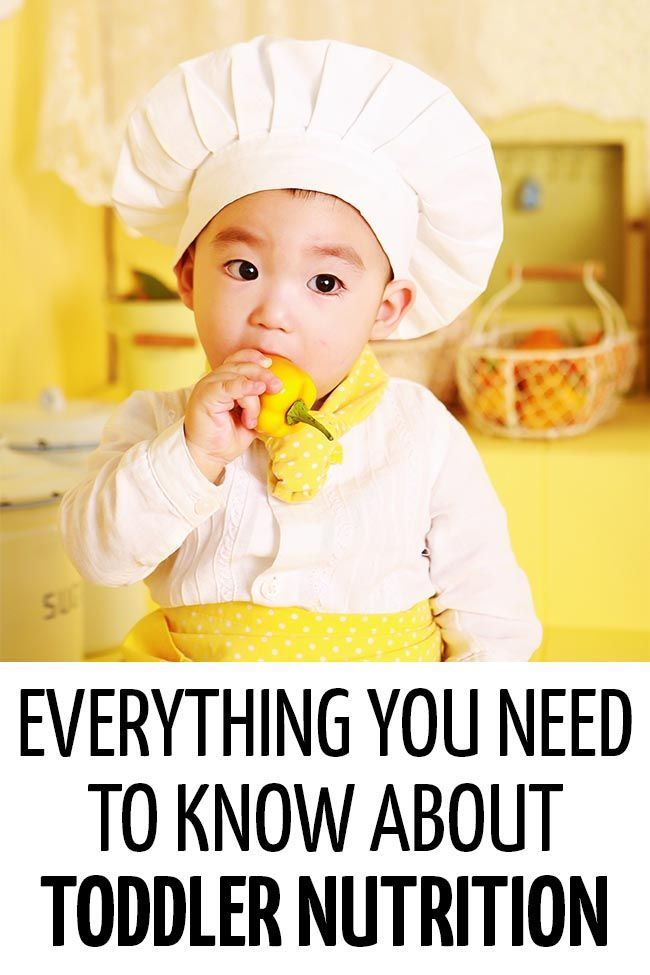 Feeding your toddler  healthy diet can be frustrating but what do you actually need to feed them an overview of nutrition by pediatric doctor also dr orlena positive parenting and eating for fussy toddlers