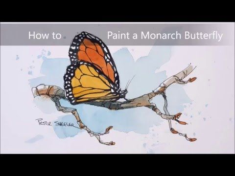 A Line And Wash Watercolour Of A Monarch Butterfly Simple Fun
