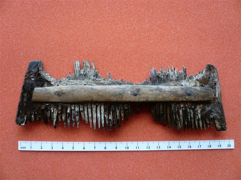 Saxon Comb