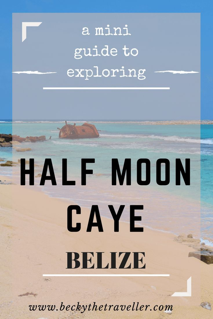 A mini guide for exploring Half Moon Caye. I visited as part of my diving tour lunch stop and realised for a wildlife lover there's lots to explore. Belize   Caye Caulker   Island