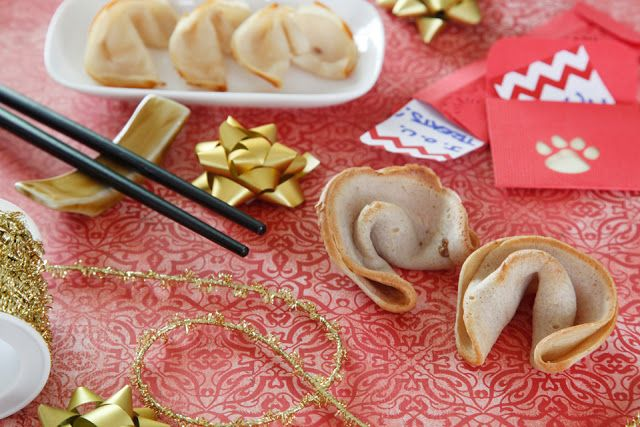 Recipe Chinese New Year Dog Fortune Cookie Easy Dog Treat