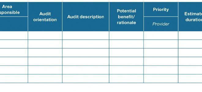 Audit Program Explaination  Auditing Notes  Learn Accounting