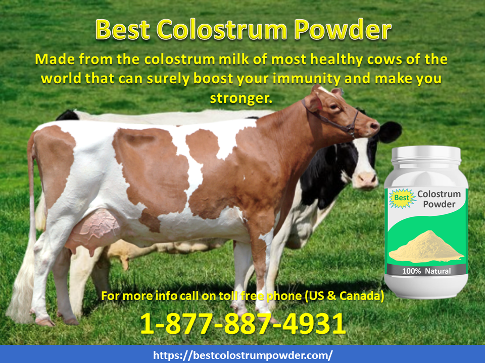 The Best Colostrum Powder is made from the colostrum milk
