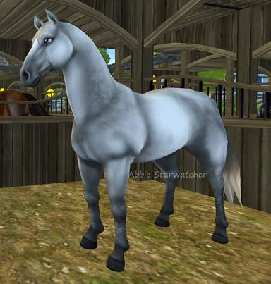 Hästar [Starstable Database] | Star Stable
