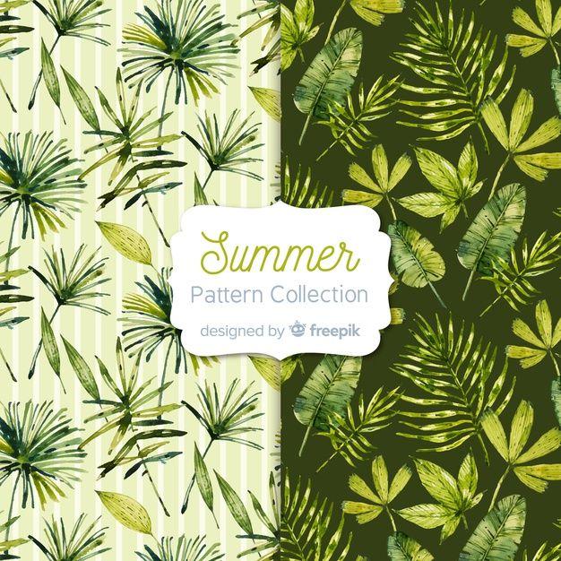 وکتور رایگان مجموعه الگوهای تابستانی آبر... Free Vector