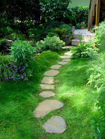 Shade Garden Plants Landscaping Ideas Pathways