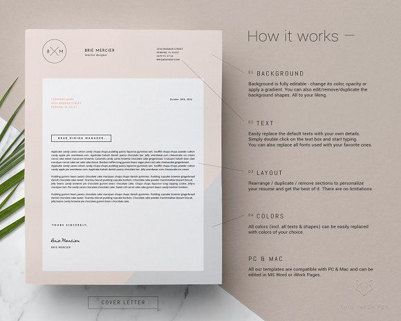 minimal resume template by this paper fox on creativemarket