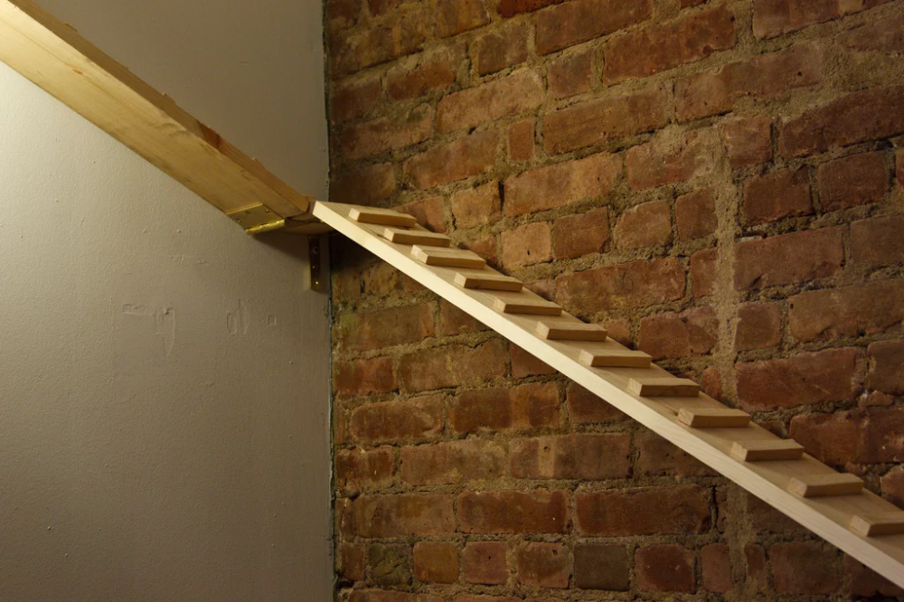 DIY Kitty Ramp in 2020 Cat ramp, Cat stairs, Cat ladder
