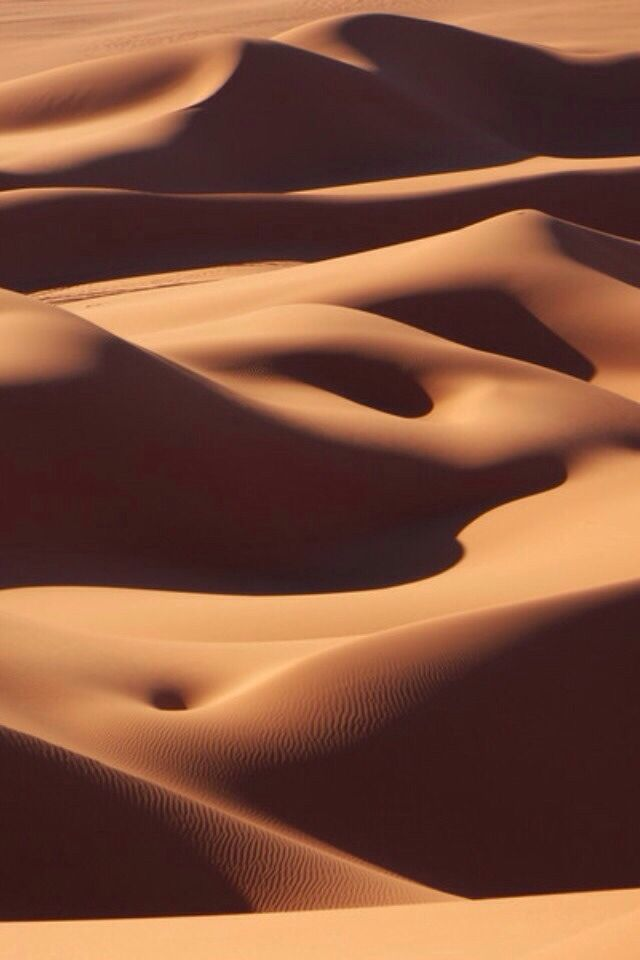 Dunes as bodies on the beach or the other way round?