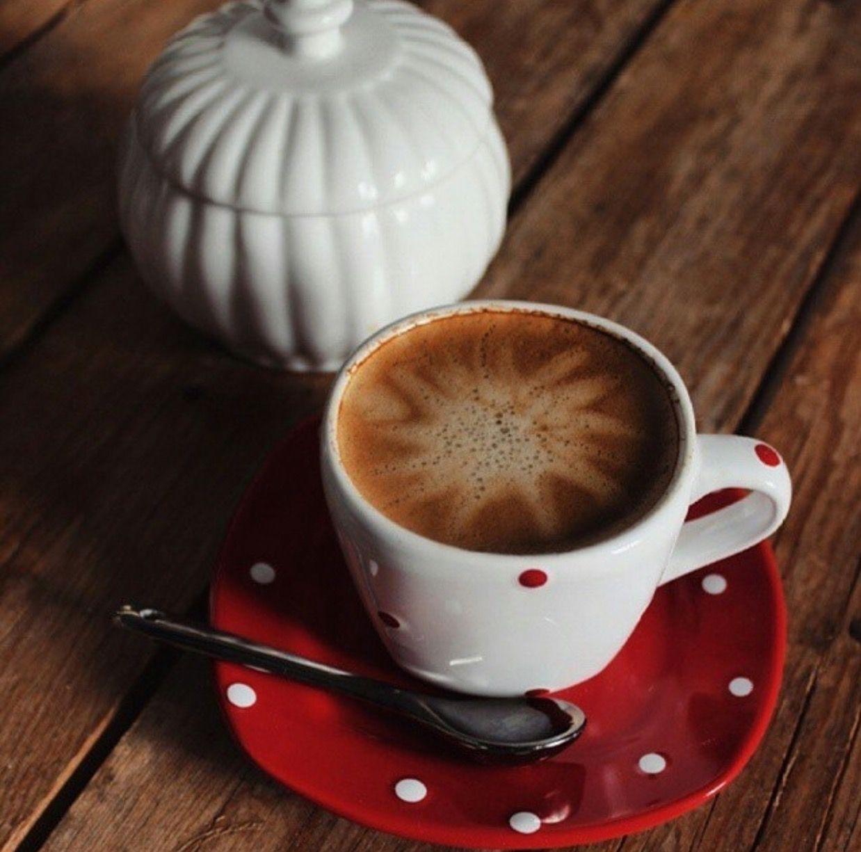 Pin by XRISATAN on coffee lovers Coffee facts, Starbucks