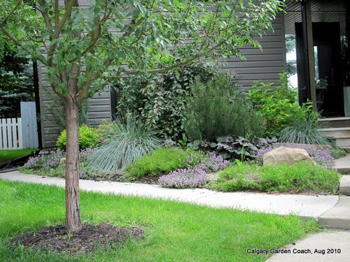 A Low Maintenance Front Yard Garden In Calgary Front Yard