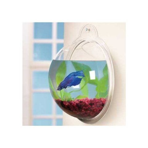 Fishy Mother S Day Gifts And The Coolest Fish Bowls Too