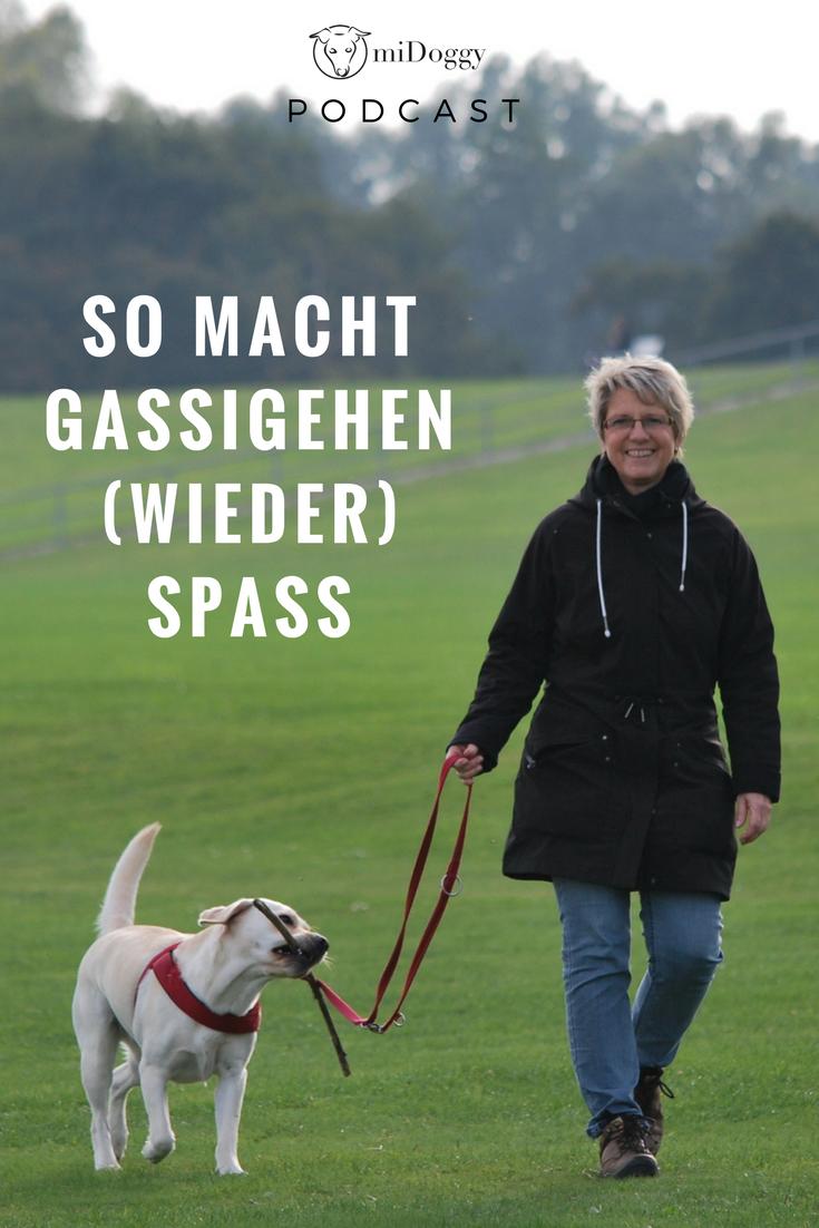 Der Midoggy Podcast Hunde Hundetricks Alles Fur Den Hund