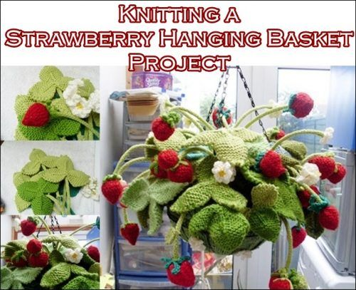 Knitting a Strawberry Hanging Basket Project Homesteading  - The Homestead Survival .Com