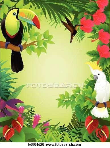 Jungle Clipart : jungle, clipart, Jungle, Clipart, Stock, Illustrations., 6,805, Vector, Illustrations, Drawings, Available, Search, Over…, Scene,, Tropical, Birds