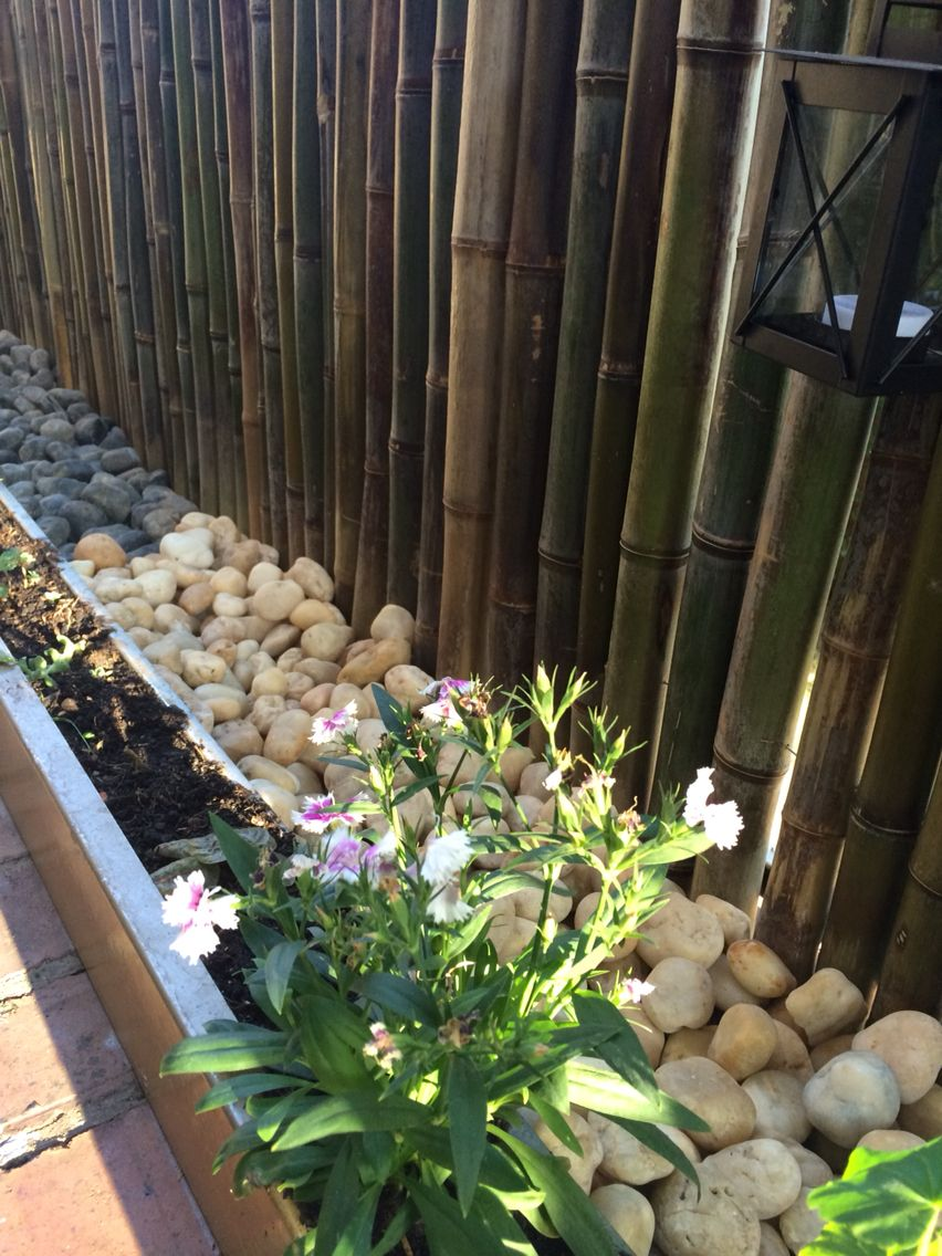 Fence bamb rock white and black barrera en bamb con - Jardineras con bambu ...