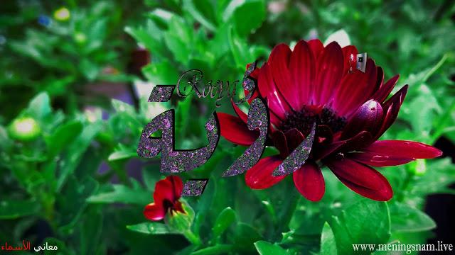 معنى اسم رؤية وصفات حاملة هذا الاسم Roeya Plants