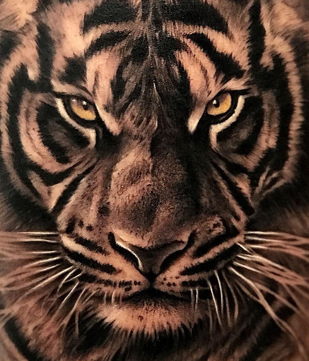 Seven Tattoo On Instagram T Tattoo Tatuaje Ink Love Animal Animals Tiger Boy Ma A In 2020 Tiger Tattoo Sleeve Tiger Tattoo Design Tiger Tattoo
