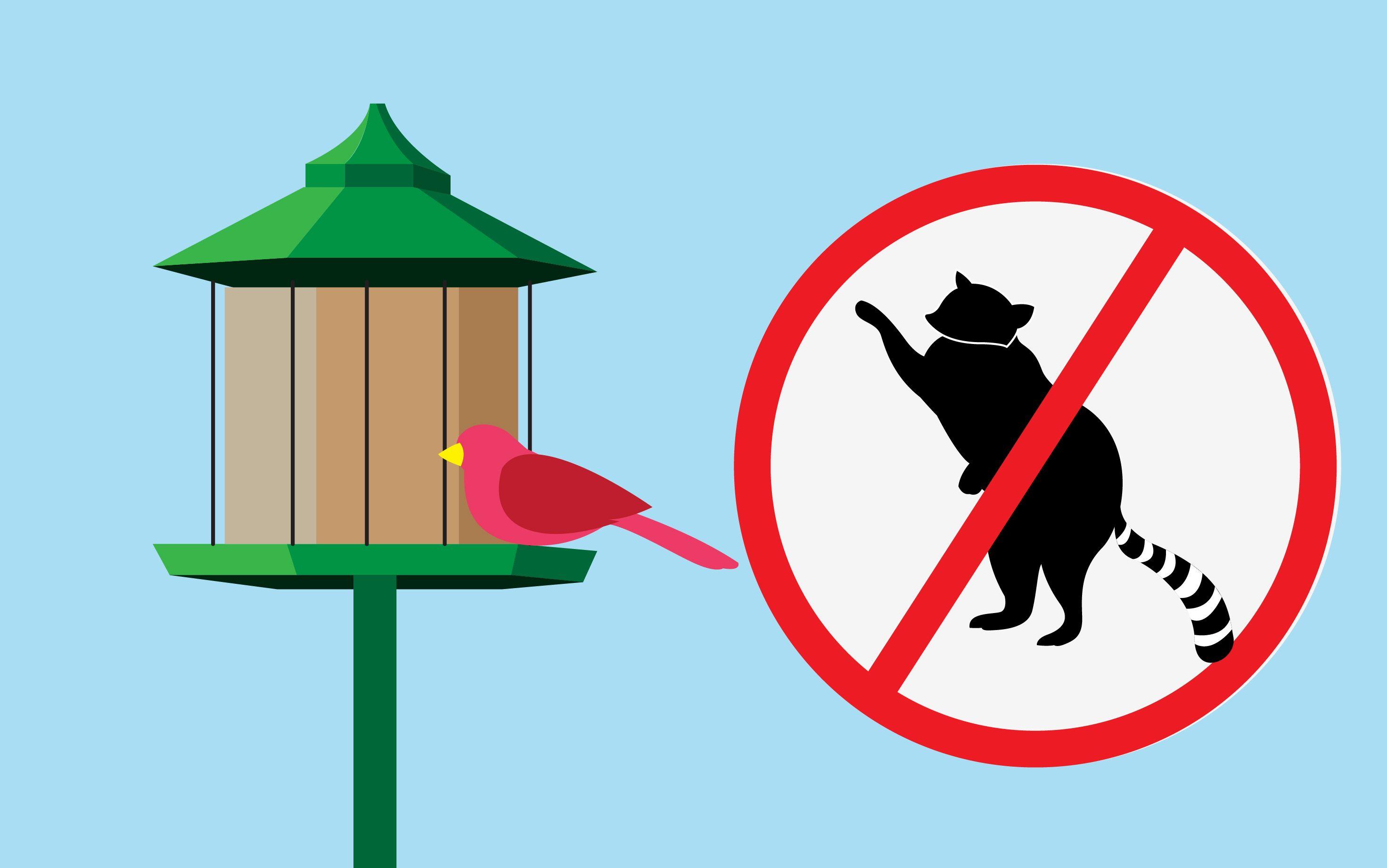 wikiHow to Keep Raccoons off Your Bird Feeder Pole via