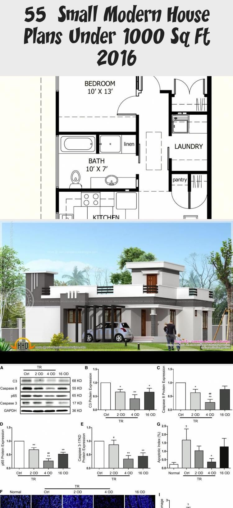 50 Small Modern House Plans Under 1000 Sq Ft 2019 Modernhousesketcharchitects Modernhousesketch Small Modern House Plans Modern House Plans Small Modern Home