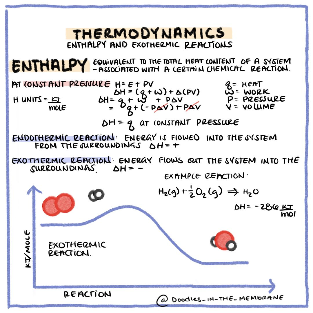 Thermodynamics Doodle Graphic In 2020 Thermodynamics Stem Students Chemistry