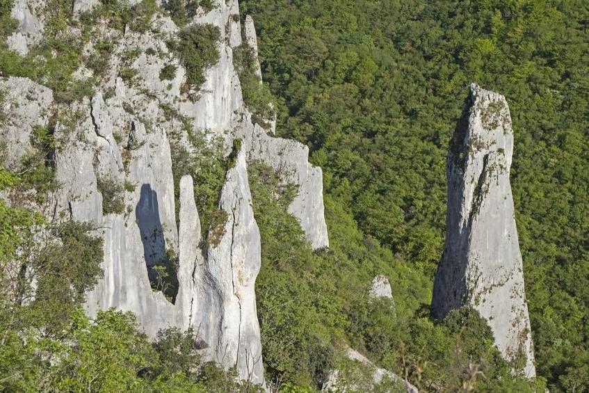 Natur pur - so herrlich sind Kroatiens Nationalparks Bild 17 - Reisen