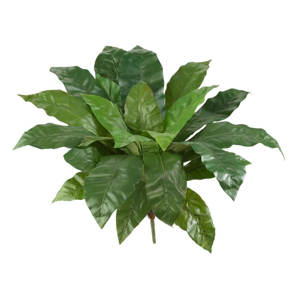 Indoor in birds nest fern artificial plant set products