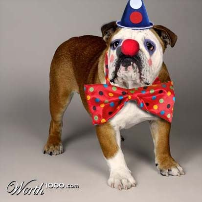 Bulldog Clown