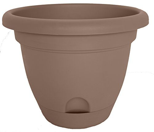 Bloem Lp12186 Lucca Planter 12inch Curated 6pack Check This Awesome Product By Going To The Link At The Image Self Watering Planter Planters Planter Pots