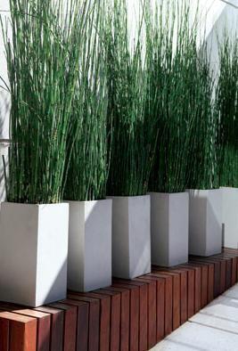 diseos de patios y jardines minimalistas 19