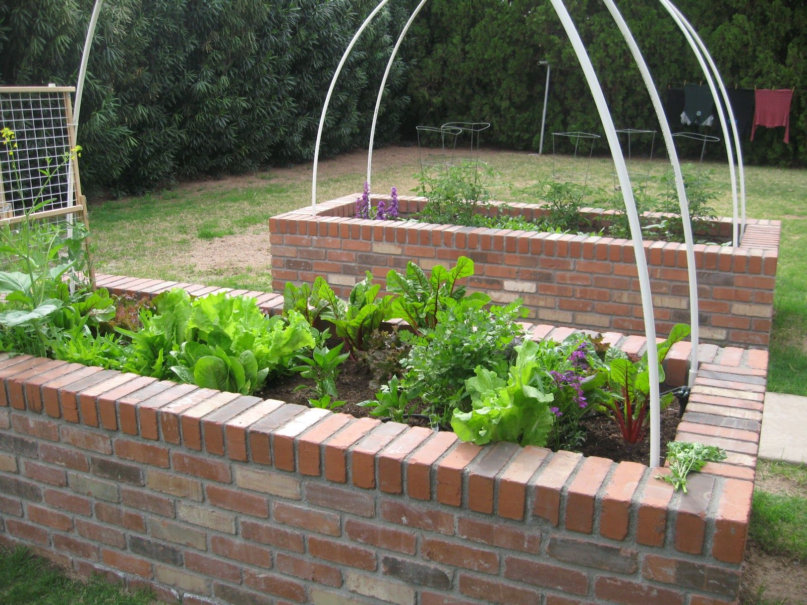 Brick raised bed vegetable garden garden pinterest for Raised veggie garden designs
