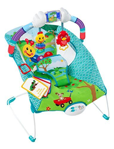 f5a7dc56e323 Baby Einstein Caterpillar s Day at the Park Bouncer