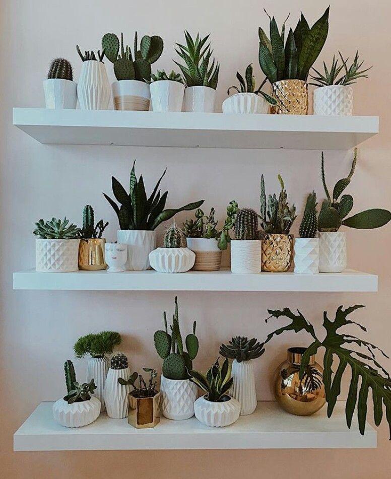 Kitchen Plant Shelf Decorating Ideas: 7 Creative Tips And Tricks: Long Floating Shelf Kitchen