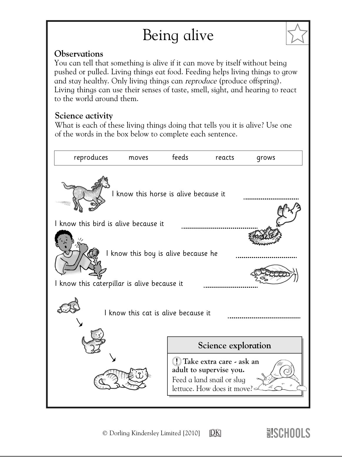 Teach Child How To Read Free Printable 1st Grade