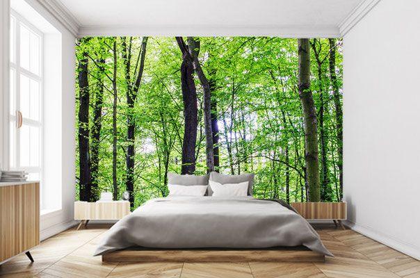 Schlafzimmer mit WaldFotoztapete Schlafzimmer, Tapeten