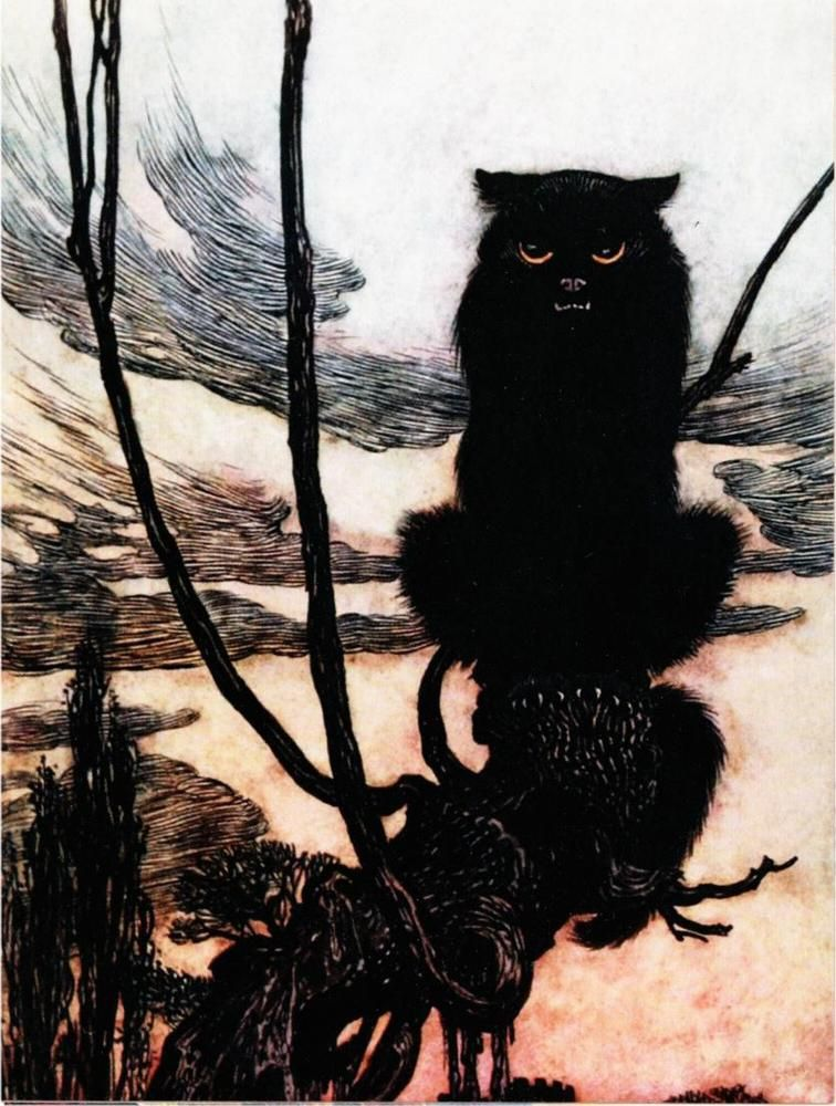 Witch in Cat Form by Arthur Rackham Black Cat Halloween Art Postcard
