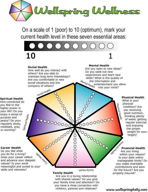 Wellness Wheel Example 4: Ramon