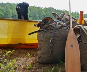 Paddling with your best friend - your dog