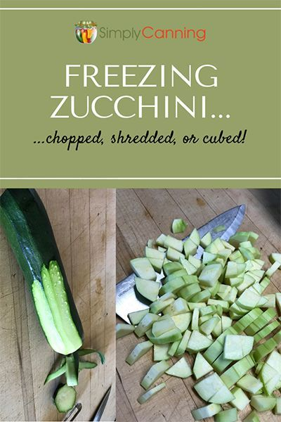 Freezing Zuchinni One of the Best Ways to Save Your Surplus Freezing zucchini whether it is chopped shredded or cubed is a fantastic way to preserve all your extras has a...