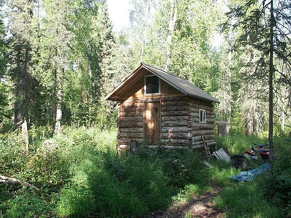 Build A Small Log Shed Cheapest Way To Build A Small