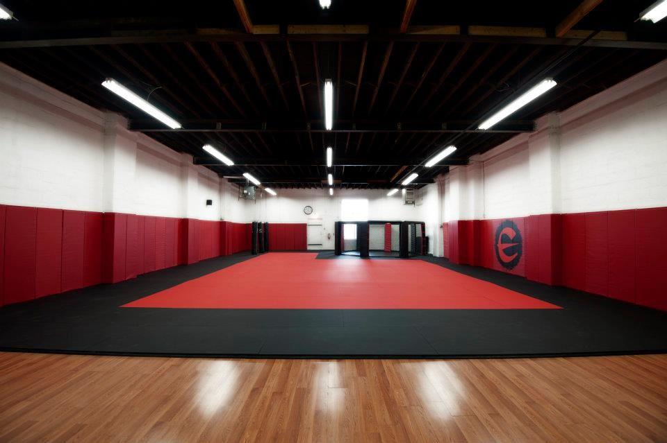 Client testimonials zebra mats canada mma gym dojo design