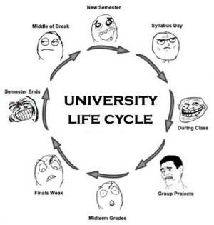 Student Jokes Student Life University Life Funny Quotes College