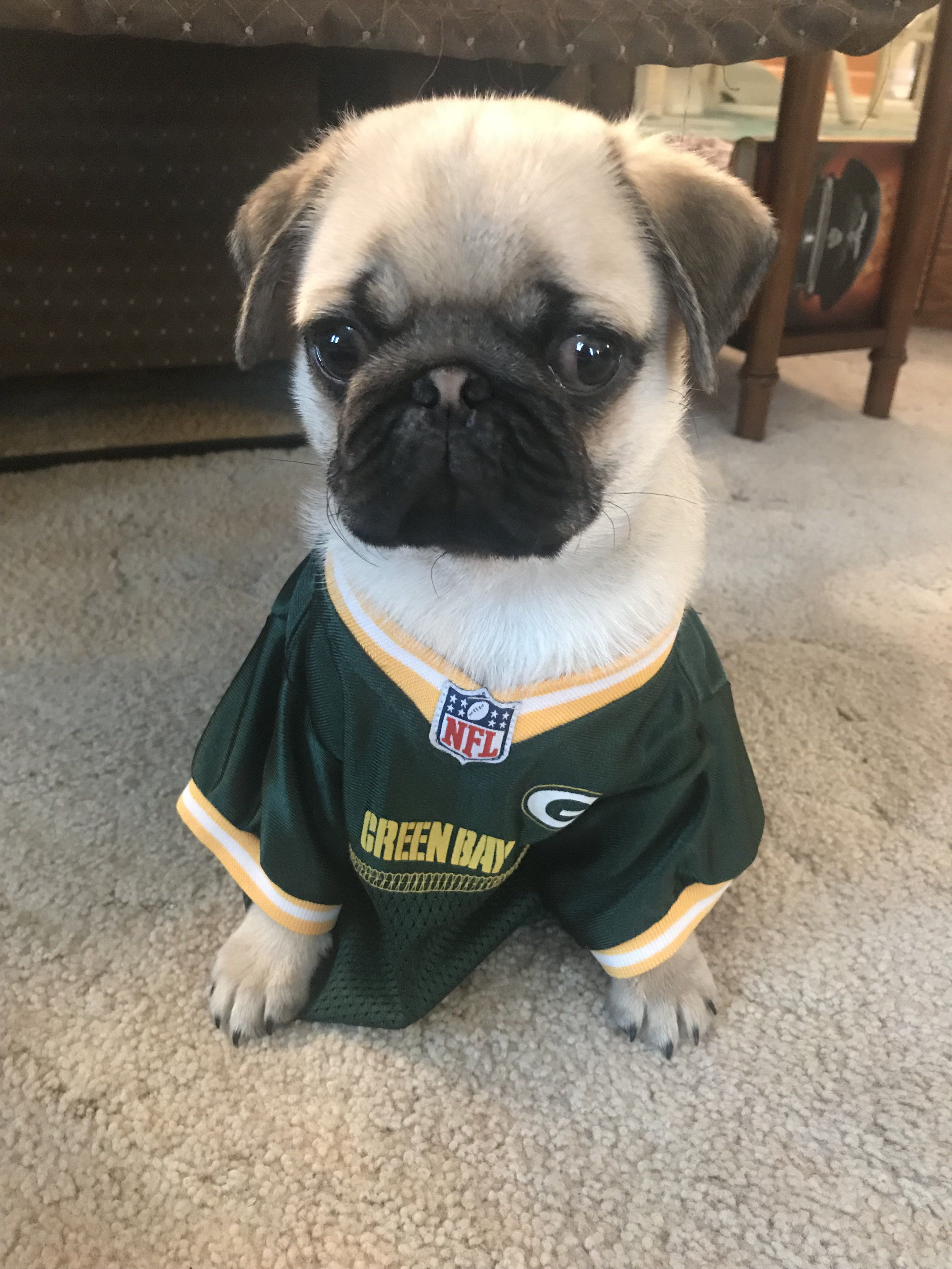 Hans Is A Die Hard Packer Fan Loves Cheese Too Green Bay