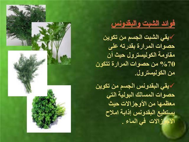 الطب النبوي و التداوي بالاعشاب فوائد البقدونس تعرف على طعام النبي صلى الله عليه وسلم صور Health