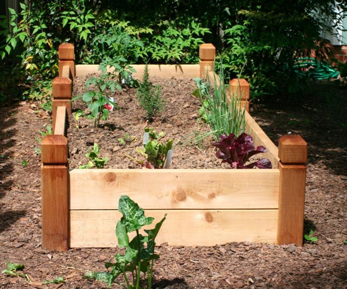 These Look Like Bed Posts! If I Put A Trellis On The End It Would · Raised  Bed GardensRaised ...