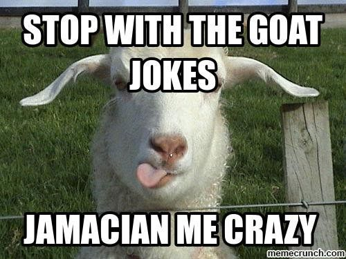 Really Funny Meme Jokes : Goat jokes things just goat serious really bad goat jokes