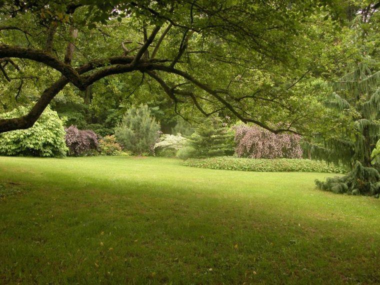 ideas para arreglar un jardín amplio