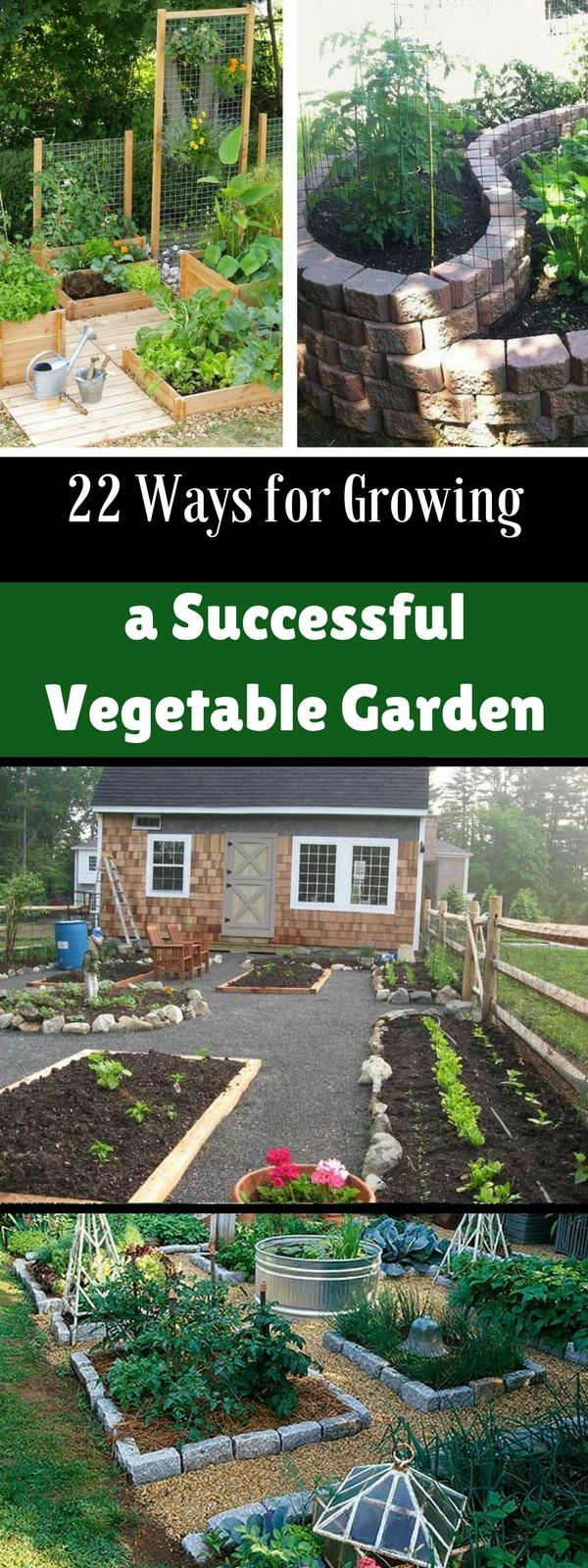 22 Ways For Growing A Successful Vegetable Garden Backyard Vegetable Gardens Organic Vegetable Garden Vertical Vegetable Gardens Backyard vegetable garden how to